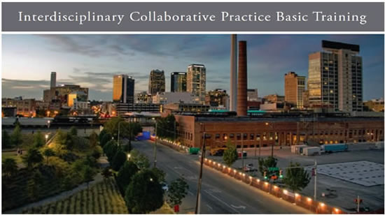 Interdisciplinary Coollaborative Practice Basic Training
